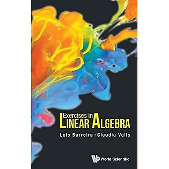 Oefeningen in de lineaire Algebra