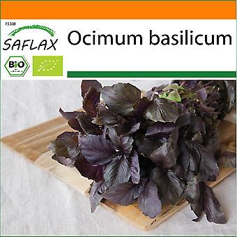 Saflax - Hage i posen - 400 frø - Organisk - Basil Rød - BIO - Basilisk - Pourpre - BIO - Basilico Rosso - Ecológico - Albahaca Roja - BIO - Rotes Basilikum