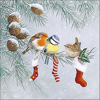 Ambiente 3 Ply Paper Napkins, Christmas Socks