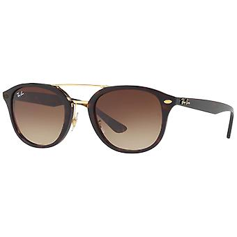 Ray - Ban RB2183 Brown/marrón degradado marrón concha