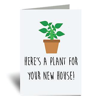 Hier's eine Pflanze für Ihr neues Zuhause A6 Grußkarte