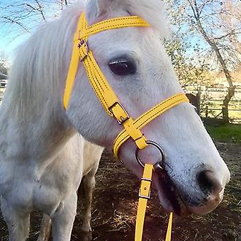 Horse Head Collar, Pp Thickened, Adjustable Safety Halter, Riding Belt,