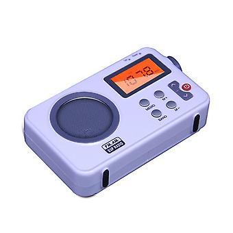 AM FM Antenne Digitalradio zum Empfänger Tragbar mit LCD Display Wecker Lautsprecher