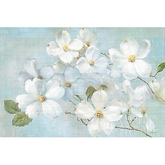 Indiness Blossoms Light Poster Print by Danhui Nai