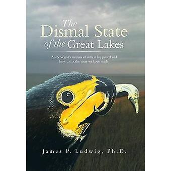 De Dismal staat van de grote meren een ecologen analyse van waarom het gebeurde en hoe het te repareren de puinhoop die We hebben gemaakt. door Ludwig Ph. D. & James P.