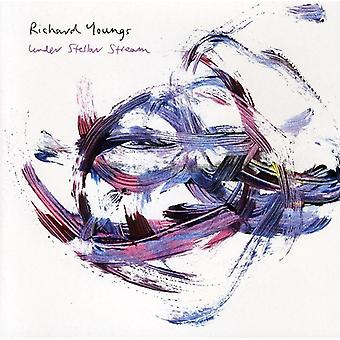 Richard Youngs - Under Stellar Stream [CD] USA import