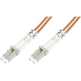 Digitus Fibreglass FOC Cable [1x LC plug - 1x LC plug] 62,5/125 µ Multimode OM1 2 m