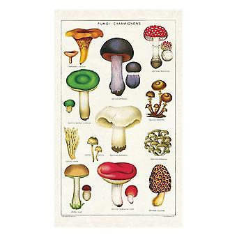 Cavallini Vintage Mushrooms Cotton Tea Towel