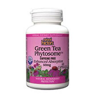 Luonnolliset tekijät Vihreä Tee Fytosome, 50 mg, 60 Caps