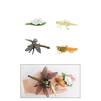 Dragonfly Miniature Figurines Model, Creatures Toy Figurines Set