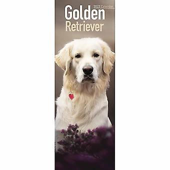 Otter House Golden Retriever Slim Kalender 2022