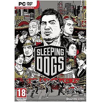 Slapende honden PC Game