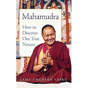 Mahamudra: Hur att upptäcka vår sanna natur
