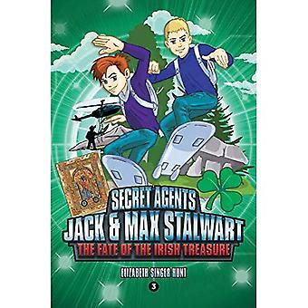 Secret Agents Jack and Max� Stalwart: Book 3: The Fate of the Irish Treasure: Ireland