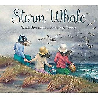 Myrsky valas