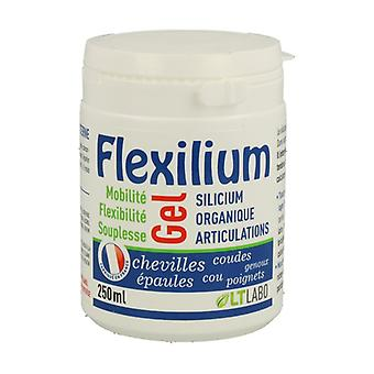 FLEXILIUM Gel 250 ml of gel