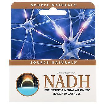 Source Naturals, NADH, 20 mg, 30 comprimés sublinguals