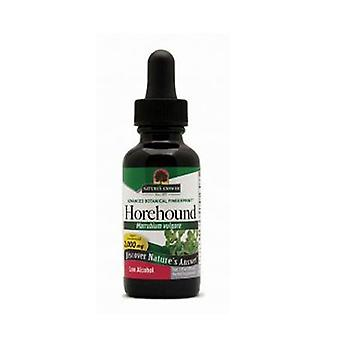 Nature's Answer Horehound Herb Extract, 1 FL Oz