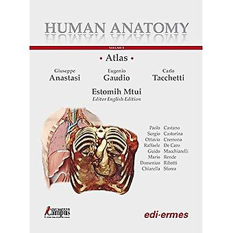 Human Anatomy - Multimedial� Interactive Atlas: Volume 1