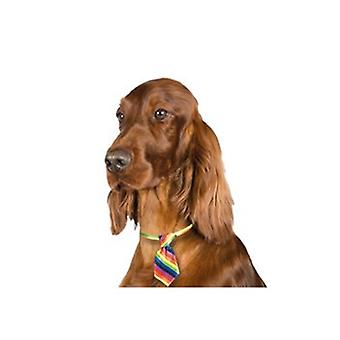 Show Tech Adjustable Fun Canine Costume Ties for Dogs - Assorted 10 Pack