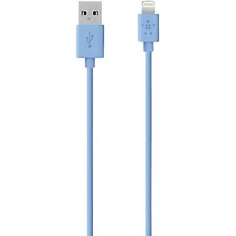 Belkin iPad, iPhone eller iPod Data kabel/laddare leda [1 USB 2.0-kontakt A - 1 x Apple Dock lightning plugg] 1.2 m blå