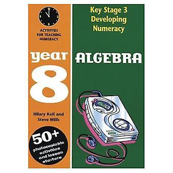 Rozwijających się 3 etapu podstawowego liczenia: Algebra rok 8 (Developings)