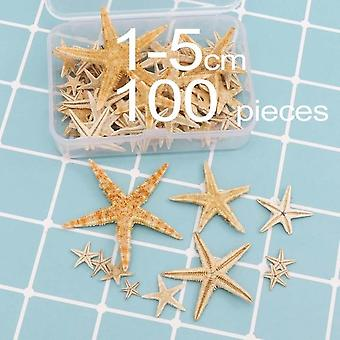 Natural Beach Craft Starfish Seashell - Natural Sea Stars DIY Beach Wedding Decoration Crafts