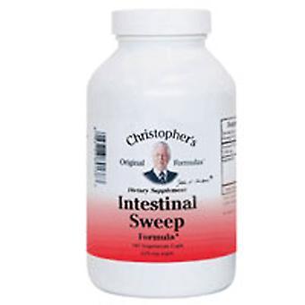 Dr. Christophers Formulas Intestinal Sweep Formula, 180 caps