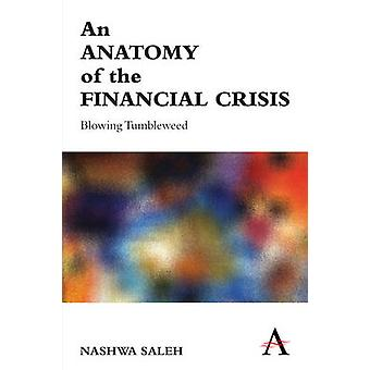 An Anatomy of the Financial Crisis - Blowing Tumbleweed by Nashwa Sale