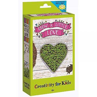 Créativité pour les enfants poussent un petit Kit de semences d'amour