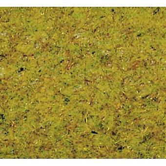 NOCH 50190 Grass flock Summer meadow Medium green