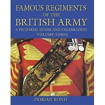 Famosi reggimenti dell'esercito britannico: una guida pittorica e celebrazione, Volume tre
