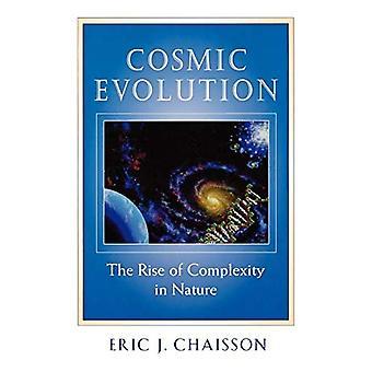 Kosmische evolutie: De opkomst van complexiteit in de natuur