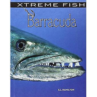 Barracuda (peixe de Xtreme)