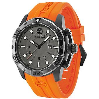 Timberland arlington Quartz Analog Man Watch with Silicone Bracelet 14108JSUB-61
