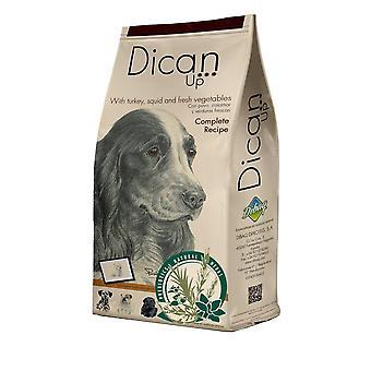 Dican upp kompletta recept för hundar (hundar, hundmat, torka mat)