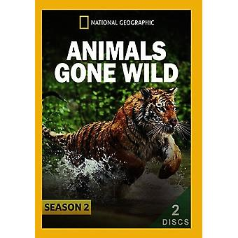 Animals Gone Wild: Season 2 [DVD] USA import
