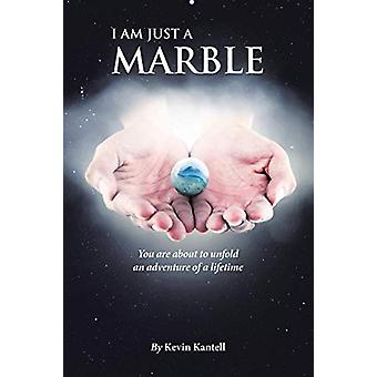 I Am Just a Marble by Kevin Kantell - 9781644714034 Book