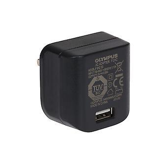 Olympus F-2AC-5D Ηνωμένο Βασίλειο φορτιστή USB για κάμερες και άλλες συσκευές USB Ηνωμένο Βασίλειο Βύσμα