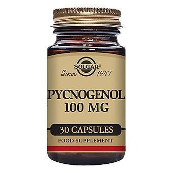Pine Bark Extract and Pycnogenol Solgar 100 mg (30 Capsules)