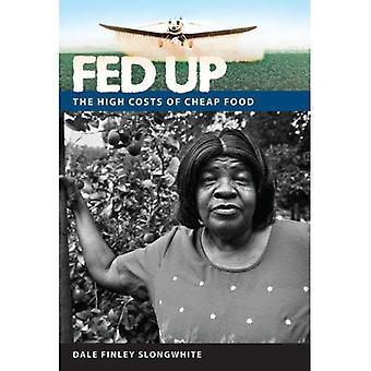 Fed upp: De höga kostnaderna för billig mat (en Florida Quincentennial bok)