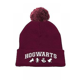 Harry Potter-Pompula-pipo