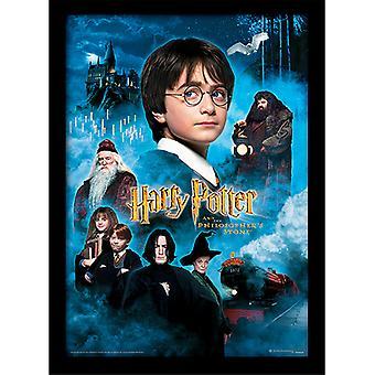 Harry Potter Philosophers Stone Framed Plate 30*40cm