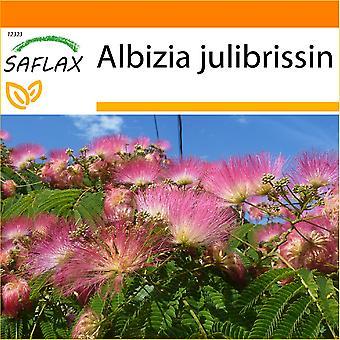 Saflax - Garten in der Tasche - 50 Samen - Pinc Acacia - Albizia - Albero della Seta - Acacia de Constantinopla - Schlafbaum