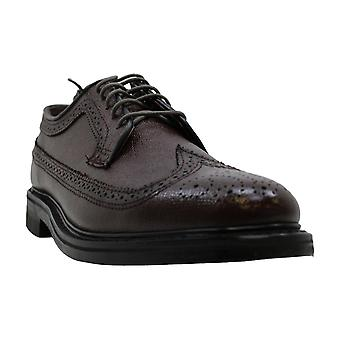 Executive Imperials Mens Wingtip Oxford Leather Lace Up Casual Oxfords