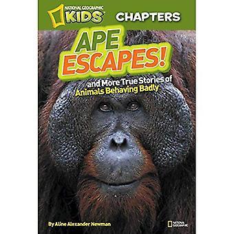Nationella geografiska barn kapitlen: Ape rymningar!: och mer Sanna historier om djur beter sig illa