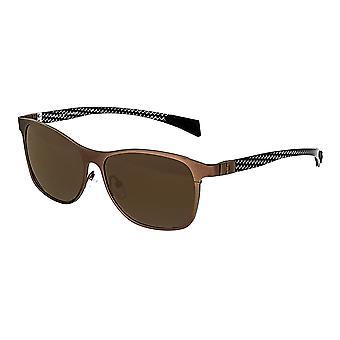 Raça dos Templários Titanium polarizada óculos de sol - marrom/marrom