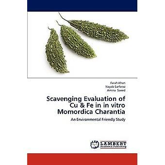 Scavenging Evaluation of Cu Fe in in vitro Momordica Charantia von Khan & Farah