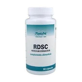 Rdsc (Hericium Erinaceum) 60 kapselia