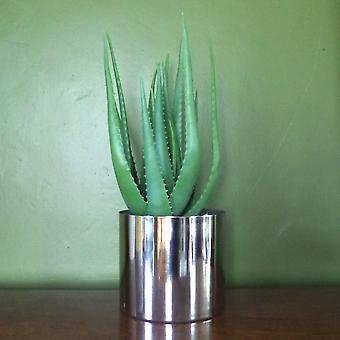 55cm künstliche realistische Aloe Vera Saftpflanze mit Silber Designer Pflanzer